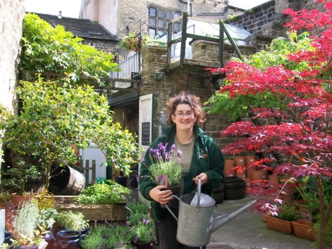 Otley Shop Heroes: Courtyard Planters | Otley & District Chamber of on